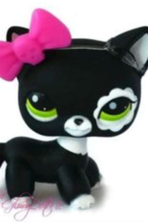 Black and white cat   Little pets, Lps cats