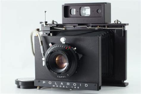 Can You Guess What's So Special About This Polaroid Land