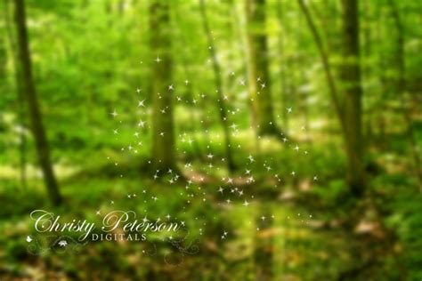 Mostly for Fairies | Christy Peterson