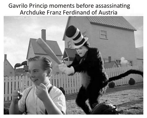 Cat in the hat memes have a lot of potential