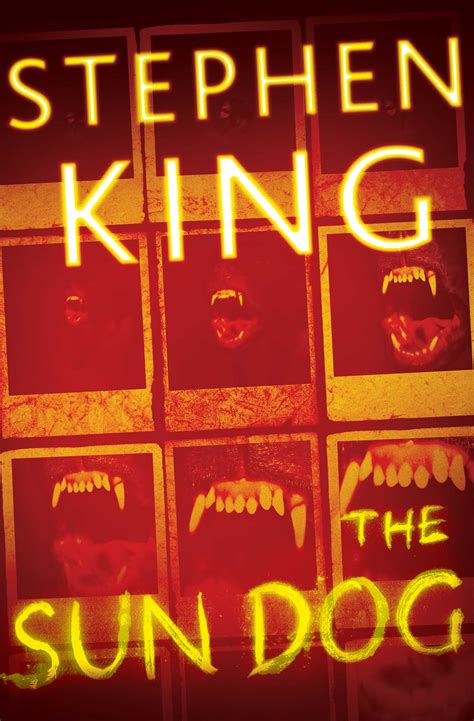 The Sun Dog   Book by Stephen King   Official Publisher