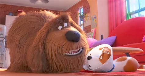 'The Secret Life Of Pets 2' Trailer Is Out, And It's Going