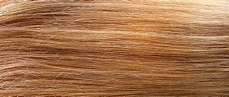 LiVe_LaUgH_LoVe ***: How to Use Cassia Obovata on Hair
